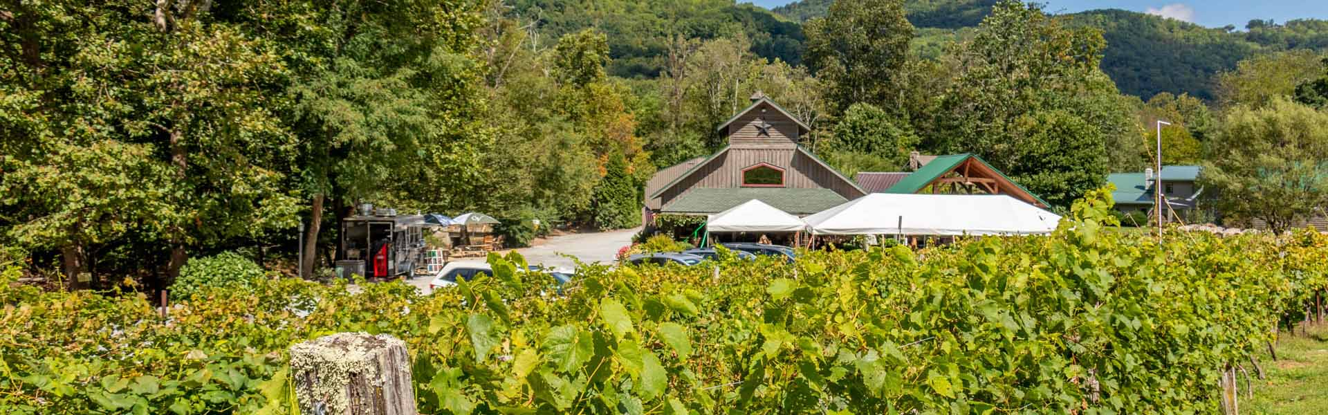 Appalachian High Country Wineries