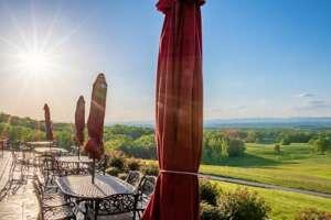 Piccione Vineyards - Yadkin Valley