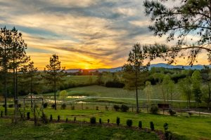 Sunset from the Tasting Room